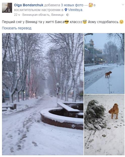 Снегопад в Виннице