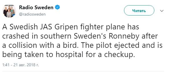 В Швеции разбился истребитель после столкновения с птицей