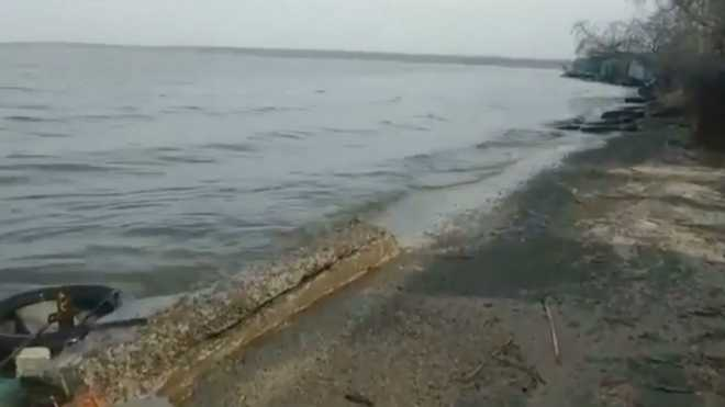 На популярному українському курорті нечистоти скидають прямо в море: плачевна ситуація