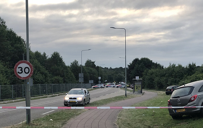 Автомобиль въехал втолпу нафестивале вНидерландах