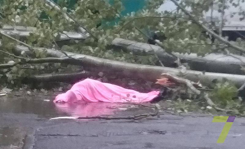 Из-за шторма вОдессе погибла женщина