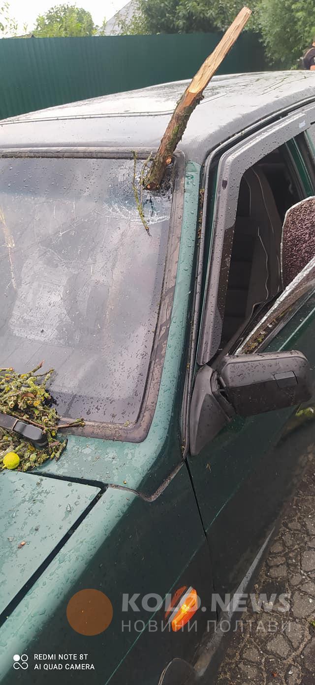 Сорванные мощным ветром ветви пробивали авто Фото: kolo.news