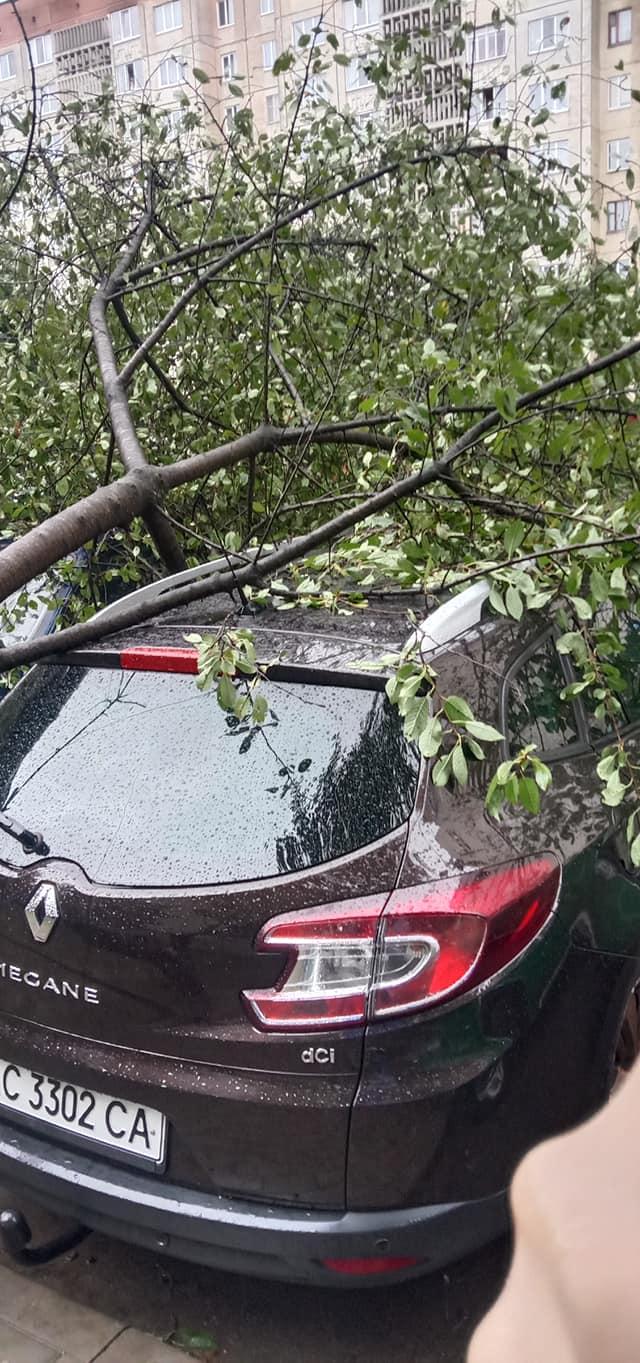 Сніг, потоп і повалені дерева: фото і відео наслідків страшної негоди в Україні