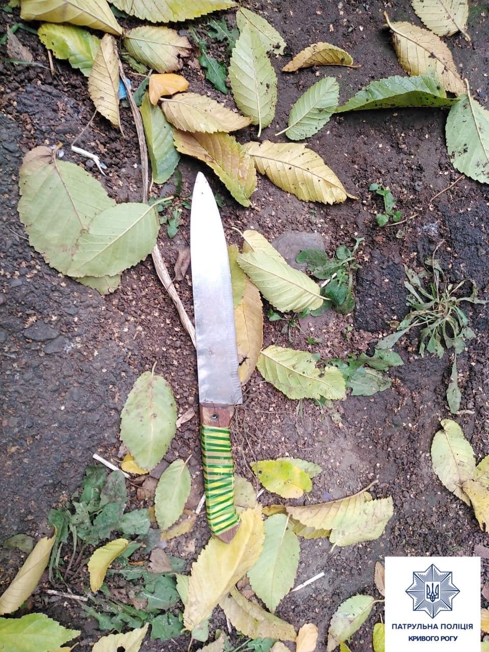 """Бігав з ножем і лякав людей: у Кривому Розі спіймали ще одного """"різника"""" (фото)"""