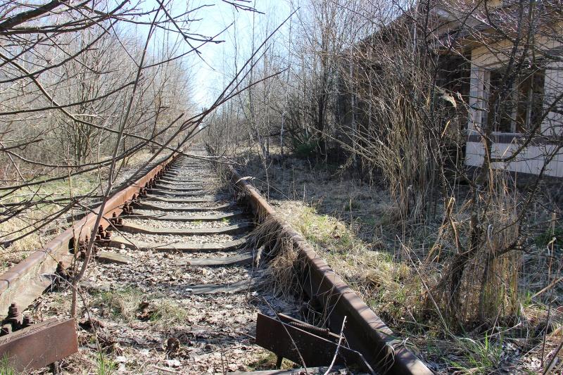 фото станции янов