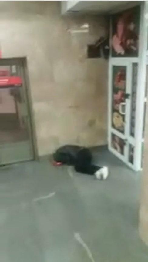 Київ без цензури: фото лежачих людей у метро шокувало мережу