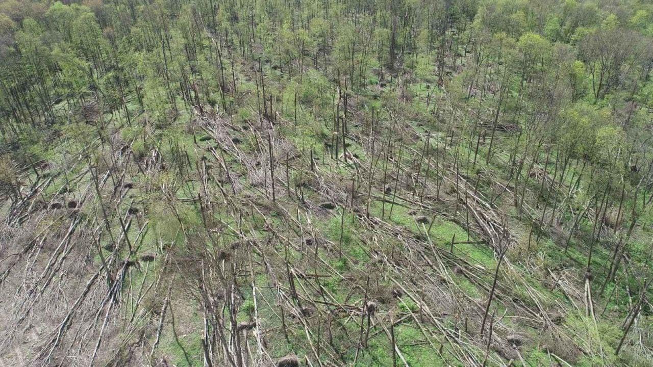 Под Житомиром пронесся разрушительный смерч: видео последствий явления