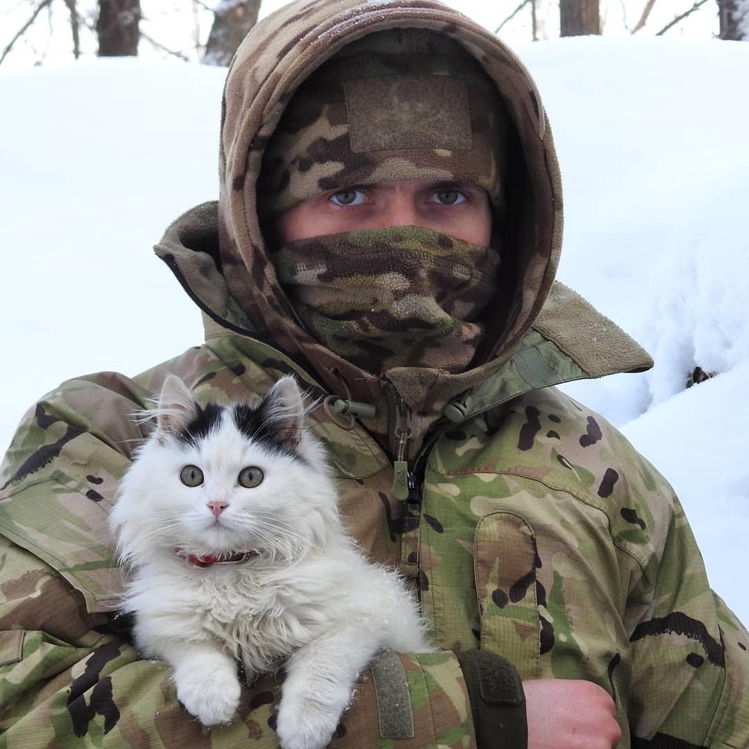Кудлаті вояки: фото вірних чотирилапих друзів українських бійців на передовій