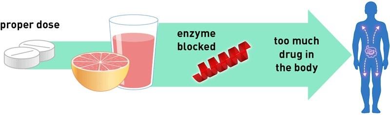 С каким популярным продуктом не стоит сочетать лекарства: может убить