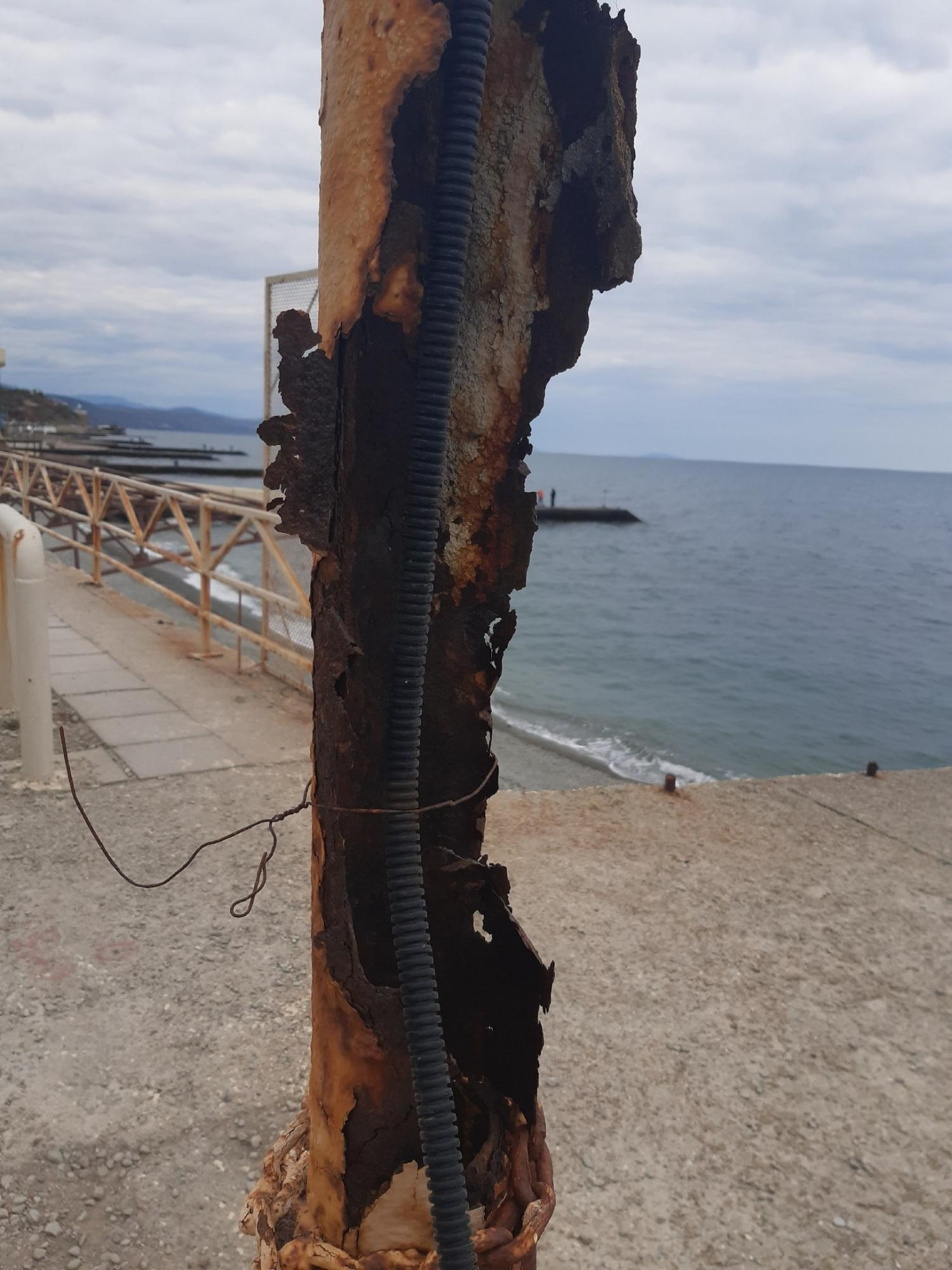 В Крыму провал курортного сезона показали на фото: грязь, вонь и разруха