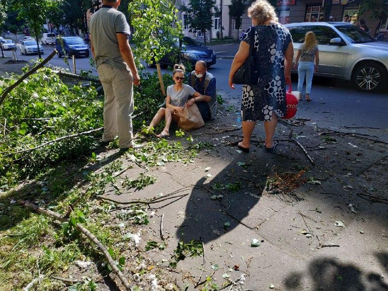 В Киеве на девушку упало дерево: фото инцидента