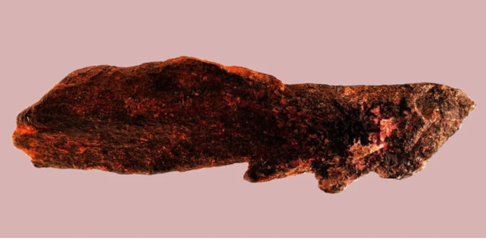 Дивовижна знахідка: вчені знайшли артефакти предків сучасних людей