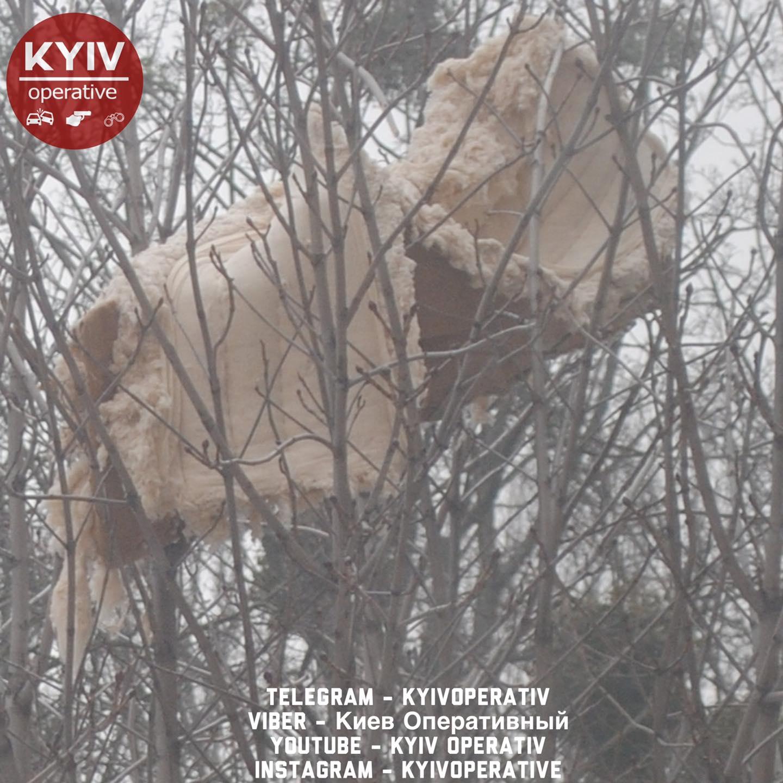 У Києві викинули диван з вікна: тепер він висить на дереві (фото)
