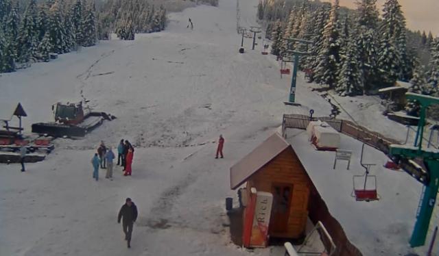 Карпаты заморозило и засыпало снегом: фото зимней сказки в горах