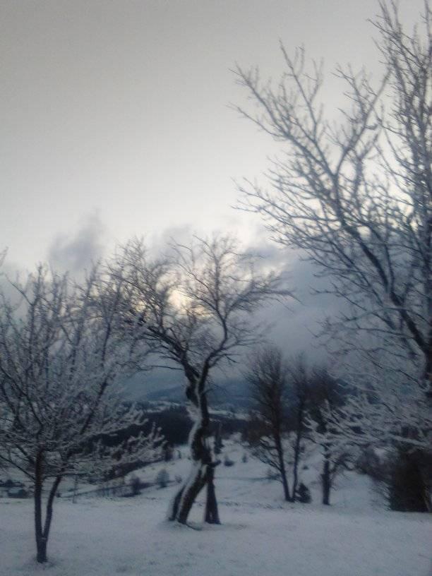 Прикарпаття накрило травневими заметами: зимову казку показали на фото