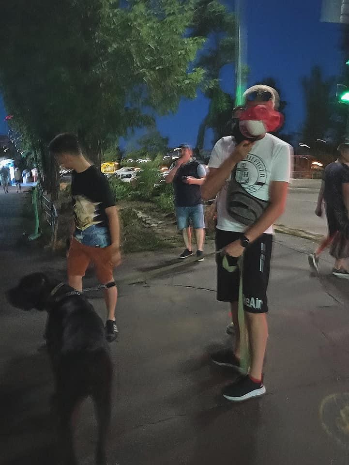 У Києві бійцівський собака тримає в страху весь район: нападає без намордника на дітей