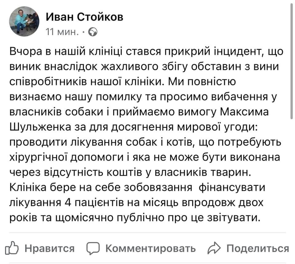 В Киеве в ветклинике стерилизовали собаку, хотя должны были просто подстричь: вспыхнул скандал