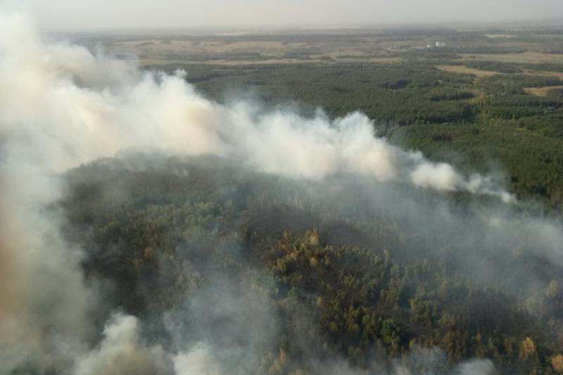 Під Харковом вирує масштабна лісова пожежа: опубліковані фото