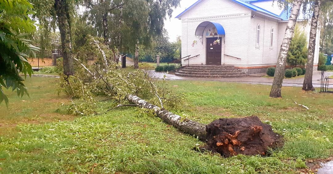 Ураганный ветер срывал деревья в Полтавской области Фото: facebook.com / Наталия Тищенко / Vadim Kirpichenko