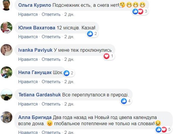 Очередная природная аномалия: в Украине забили тревогу (фото)