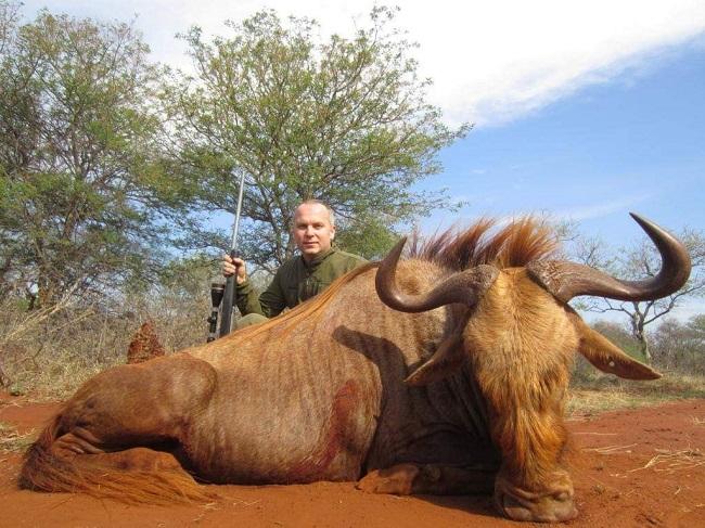 Шуфрич похвастался убийством африканских животных: три носорога и не только