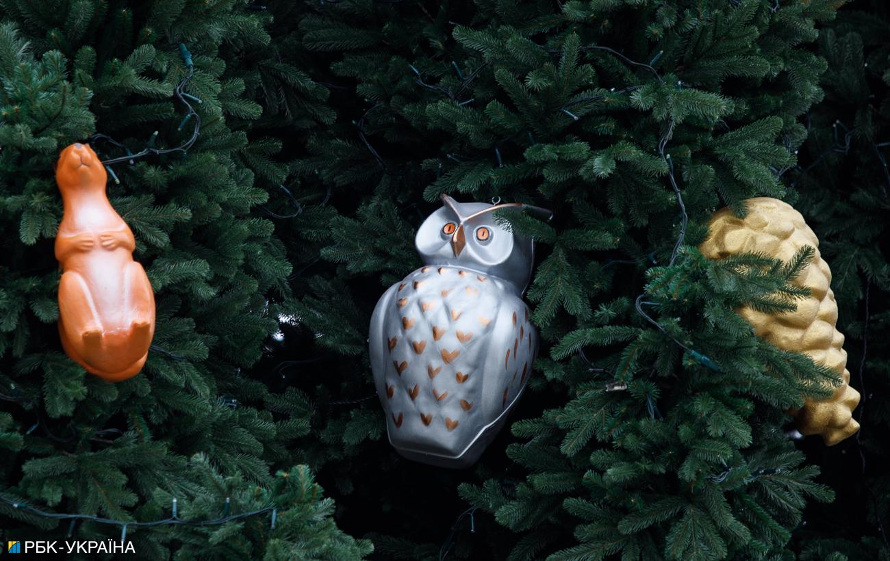 Раскрыта связь между главной елкой Украины и Гарри Поттером