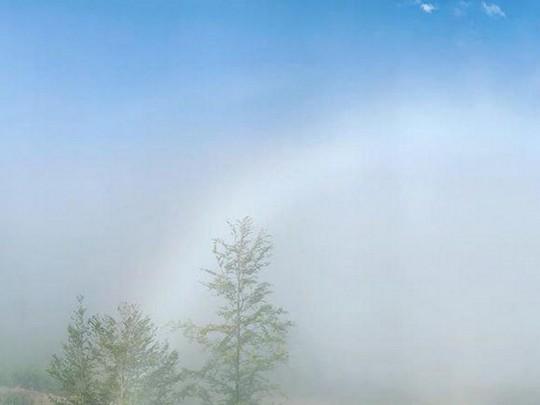 Унікальне явище: в мережі показали фото рідкісної веселки в Карпатах