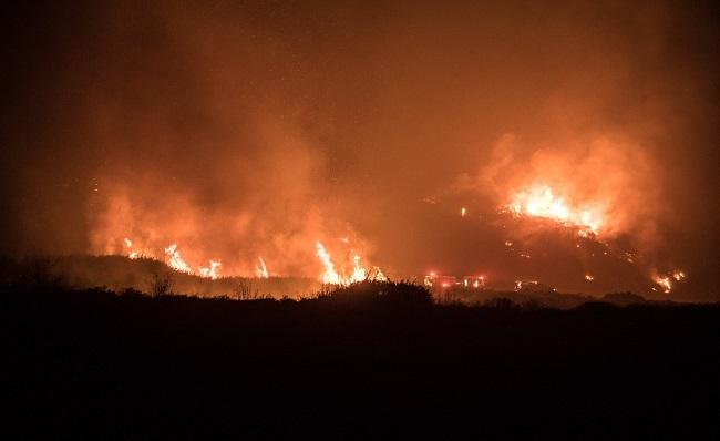 Губернатор Калифорнии ввел режимЧС из-за лесных пожаров