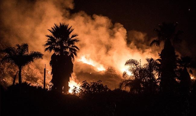 ВКалифорнии из-за пожаров эвакуировали неменее 200 тыс. человек