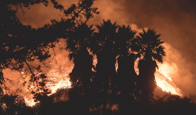 Около 27 тыс. человек эвакуированы вКалифорнии из-за лесных пожаров