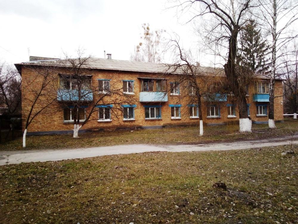 Дом в Чернобыле: стало известно, какой бизнес можно открыть за 0 грн