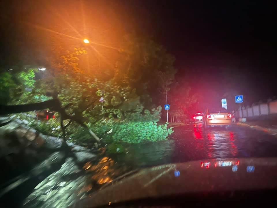 У Львові пронісся страшний буревій: двоє людей загинули на місці