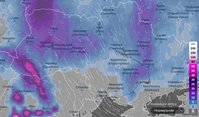 Україну засипле півметровим шаром снігу: названа дата