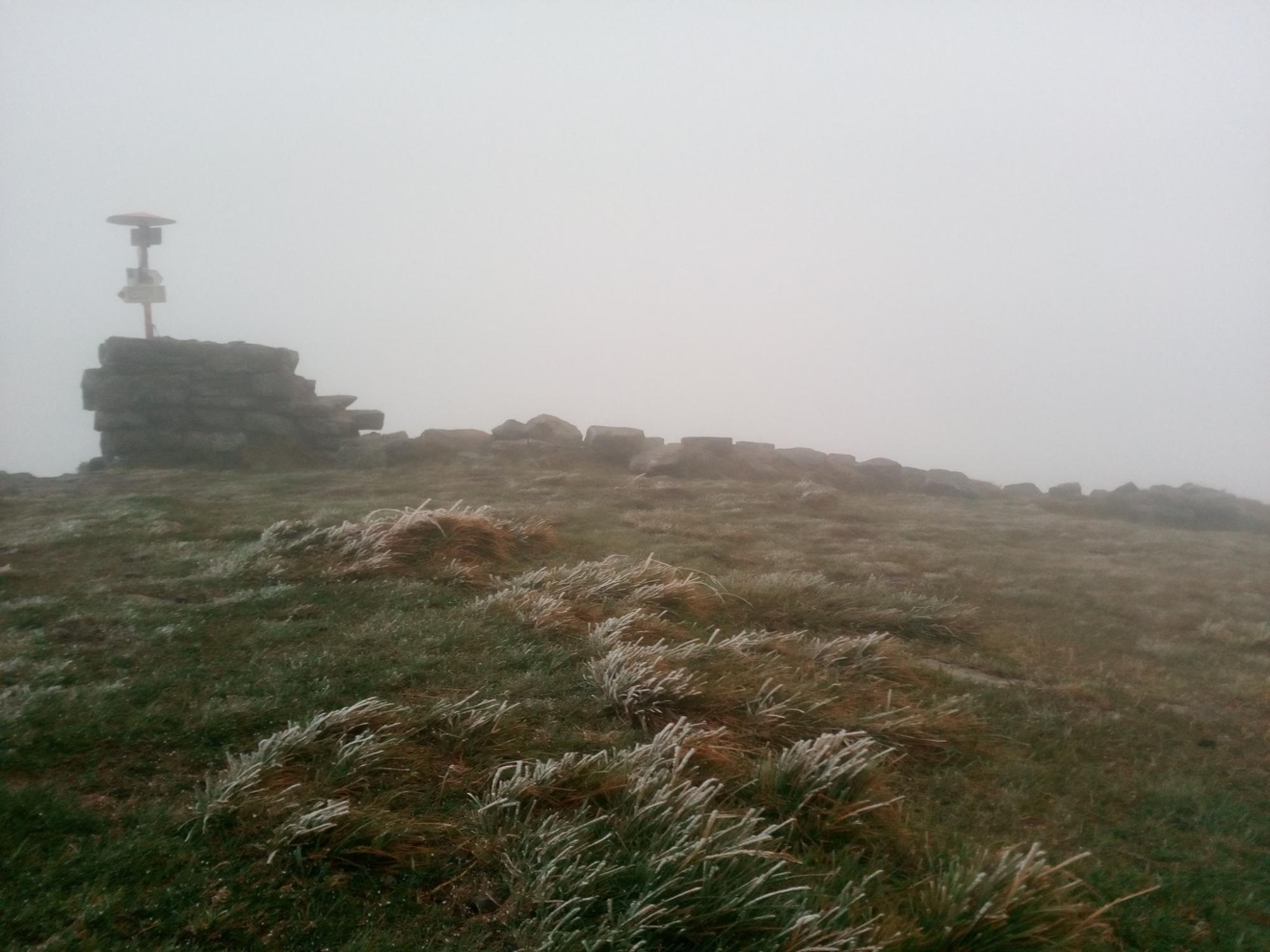 Зима прийшла: у мережі з'явилося фото першого снігу в Буковелі
