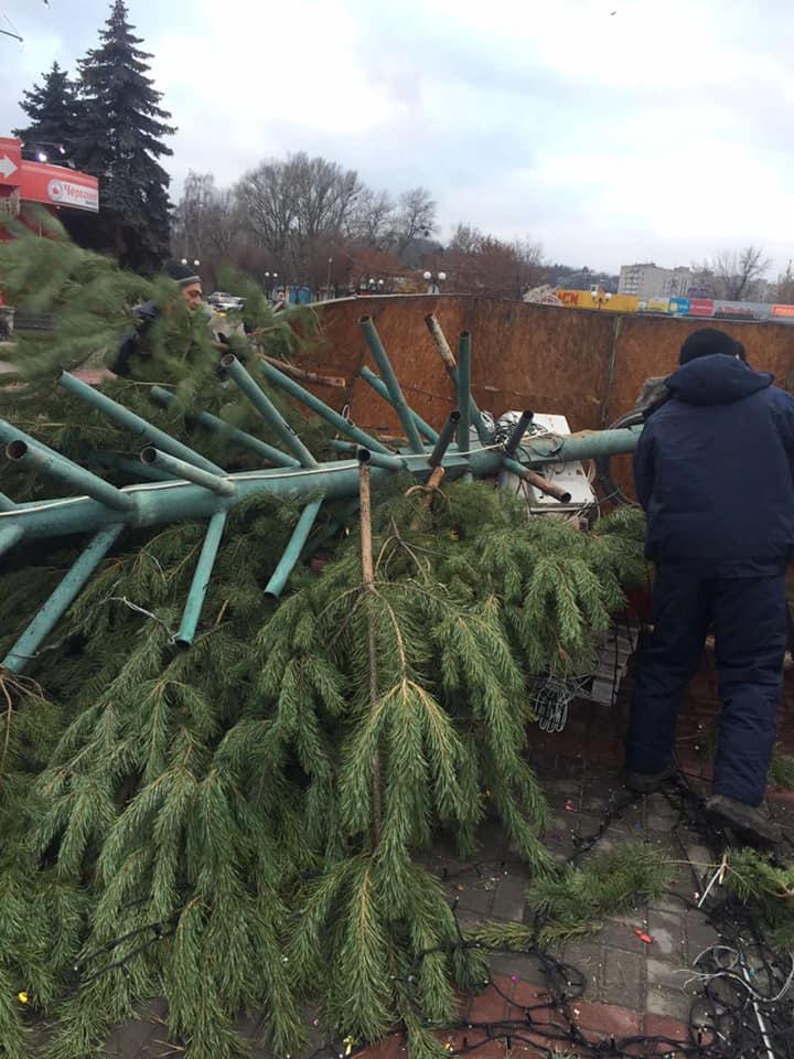 В Каневе рухнула главная новогодняяелка: винят непогоду (фото)