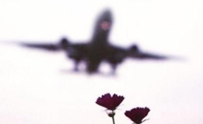 Катастрофа украинского самолета в Иране: Серега написал трогательный стих