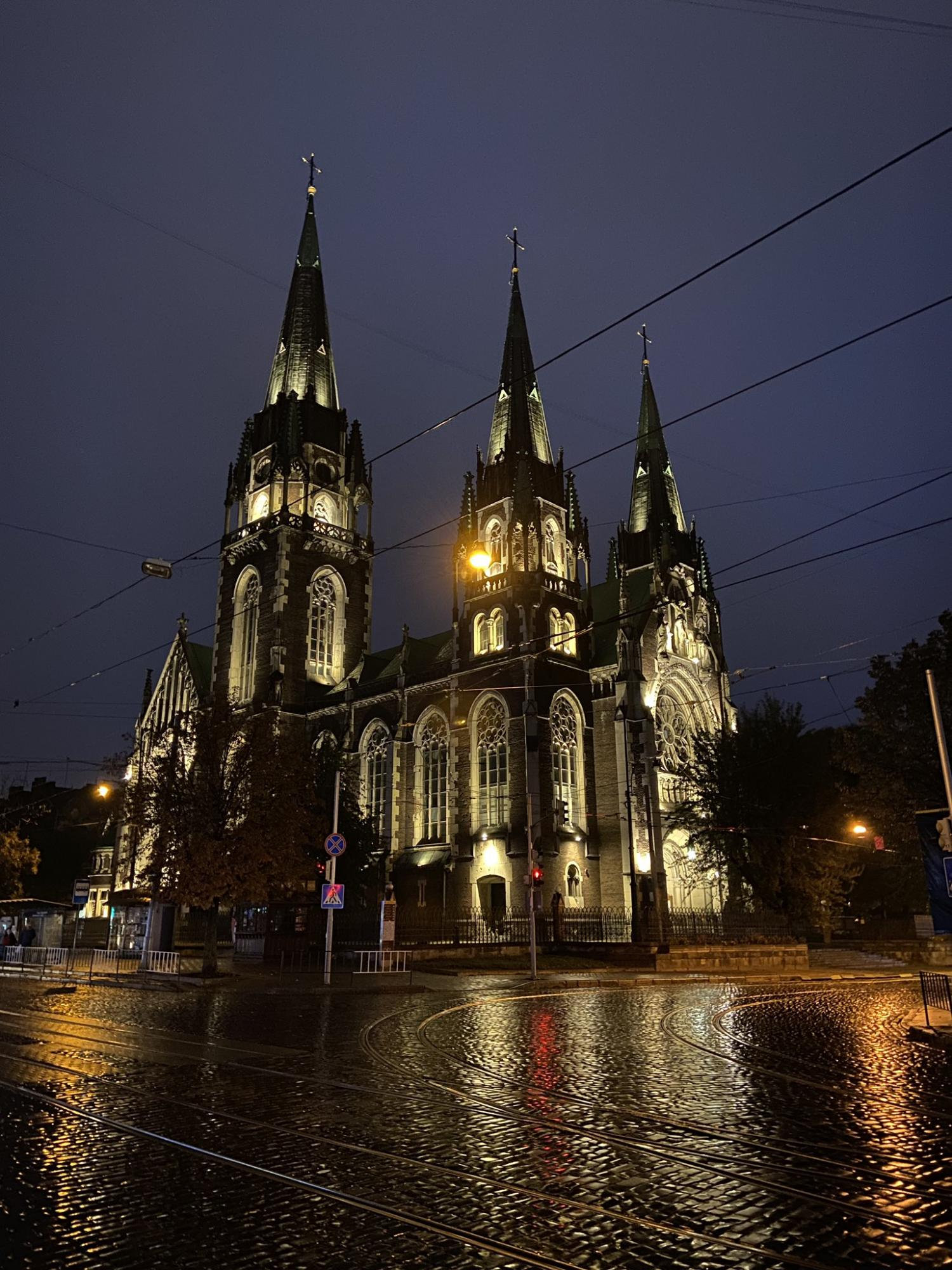 Стихия может очаровывать: сеть покорило фото Львова после мощного ливня