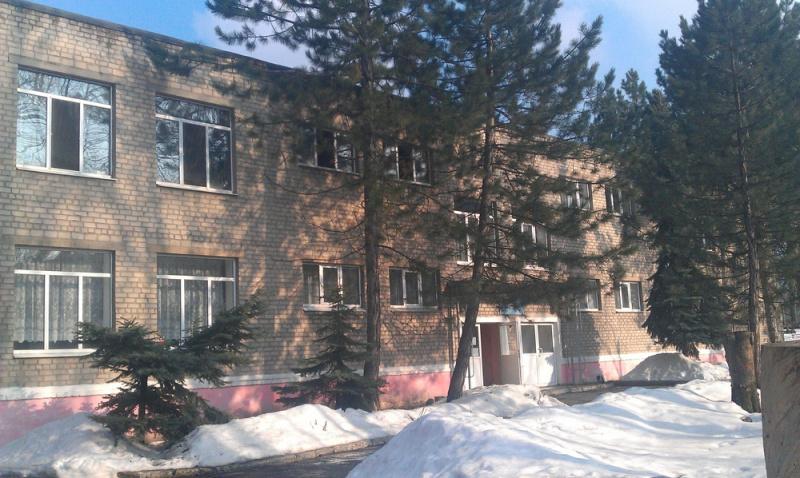 ВДонецкой области горел детский парк: эвакуировали неменее 100 человек