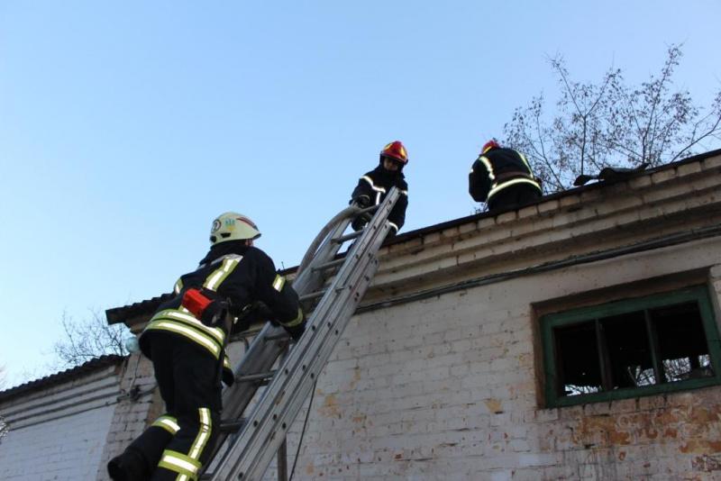 ВКиеве устранили пожар взоопарке