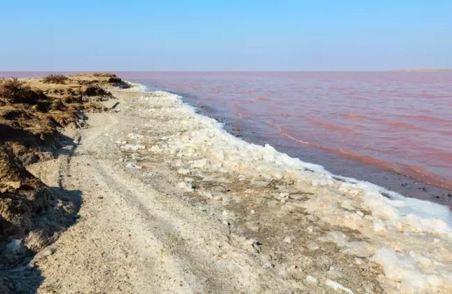 Унікальне Рожеве озеро в Україні: де знаходиться і чому туди варто поїхати