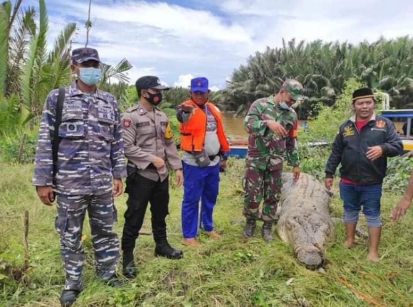 В Индонезии крокодил проглотил 8-летнего ребенка: отец бросился на рептилию с голыми руками