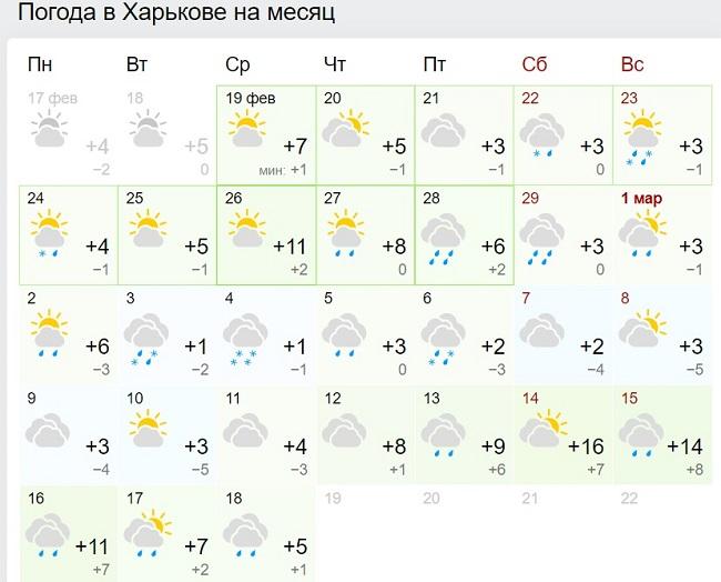Синоптики рассказали, когда в Украину придет настоящее весеннее тепло