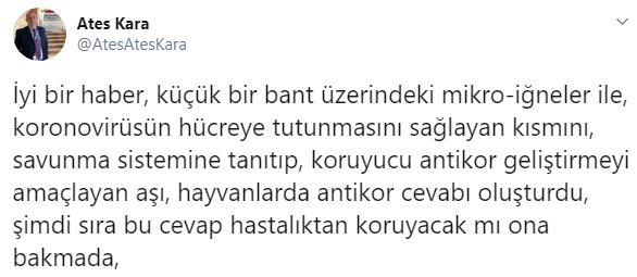 В Турции прошли успешные испытания вакцины от коронавируса