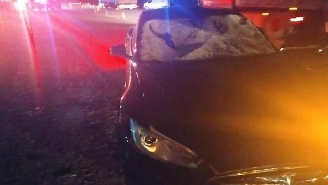 Під Львовом водій Tesla влаштував смертельну ДТП: є жертви (фото)