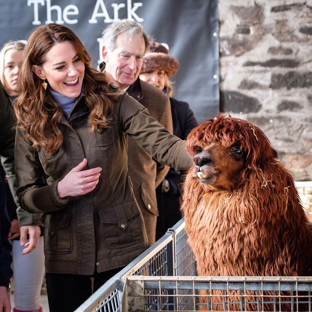 Герцогиня Дулиттл: Кейт Миддлтон умилила дружбой с ламой и козленком