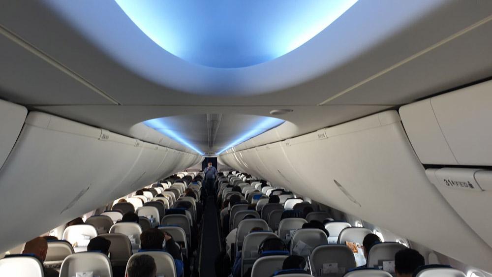 В Украину будут летать скандальные Boeing 737 Mаx: как они выглядят и что с ними не так