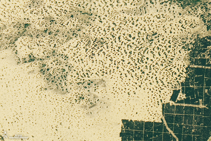 NASA показало, как выглядит необычная пустыня вУкраине из космоса (фото)