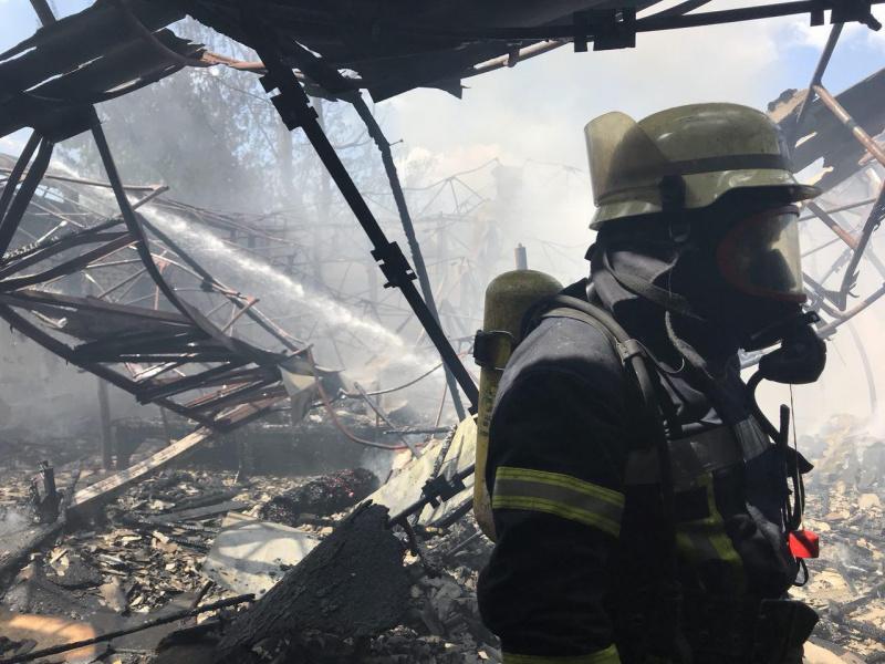 Вкиевском Гидропарке произошел пожар