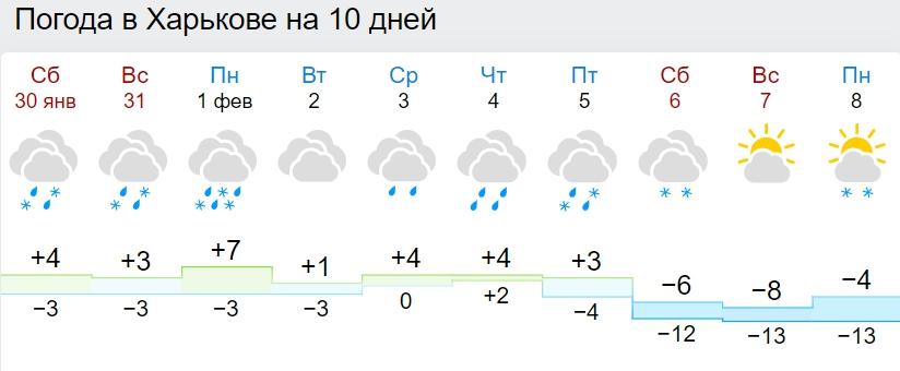 В Украину возвращаются 20-градусные морозы: синоптики назвали дату