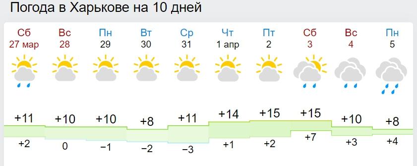 Похолодання, сніг і навіть заморозки: в Україні знову зіпсується погода